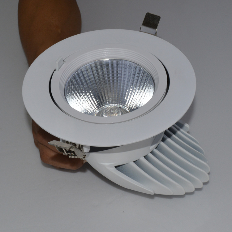 Guangdong ledde fabriken,LED-belysning,50w elefantstativ infälld Led downlight 3, e_2, KARNAR INTERNATIONAL GROUP LTD